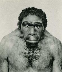 Ricostruzione_homo_neanderthal