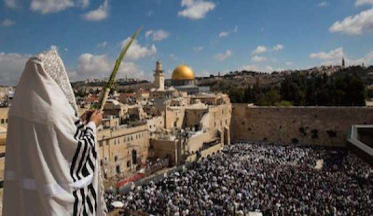 img800-oggi-gli-ebrei-di-tutto-il-mondo-celebrano-il-sukkot-la-festa-delle-capanne-104761