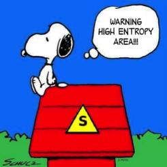 49-entropia