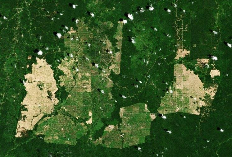 Satellitenbild / KW 29/ Borneo